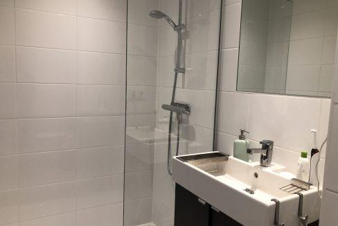 Hoogfrankrijk 27B06 - Bathroom